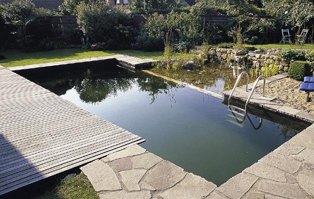 Zwemvijver opbouw soorten prijs advies for Hoeveel kost zwemvijver